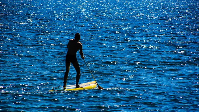 person on a stand-up paddle board